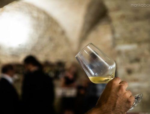 Torna la Sagra dell'uva di Cupramontana: il verdicchio come non lo avete mai degustato