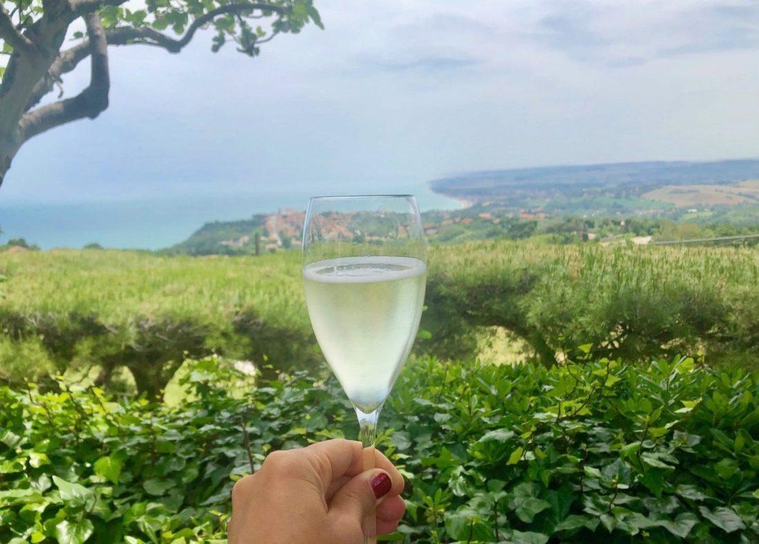 La Ginestra in Fiore_ Panorama del Conero