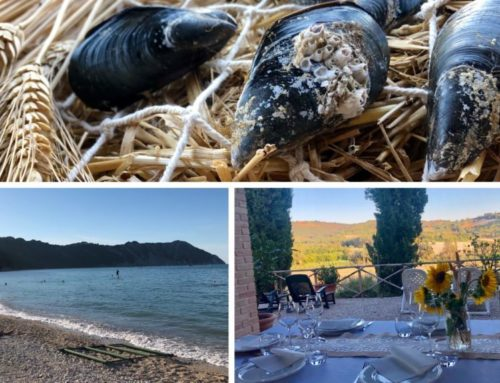 DA PORTONOVO AL RUSTICO DEL CONERO: cena country-chic e moscioli sotto le stelle!