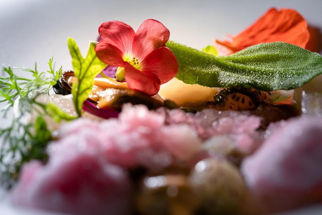 Chef Rapisarda Zuppa di Pesci Crudi e Nev di Saturnia
