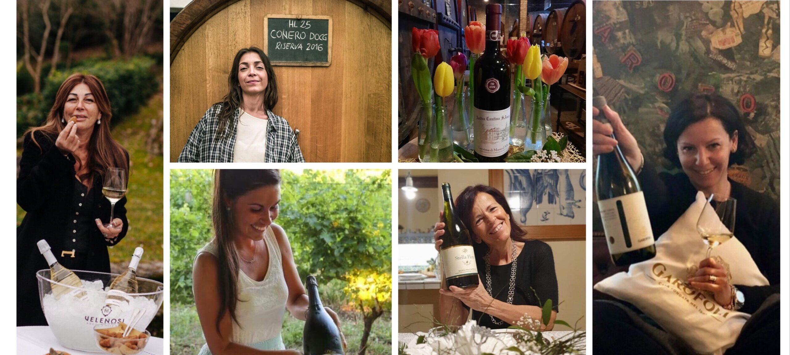 Cantine vitivinicole Marchigiane