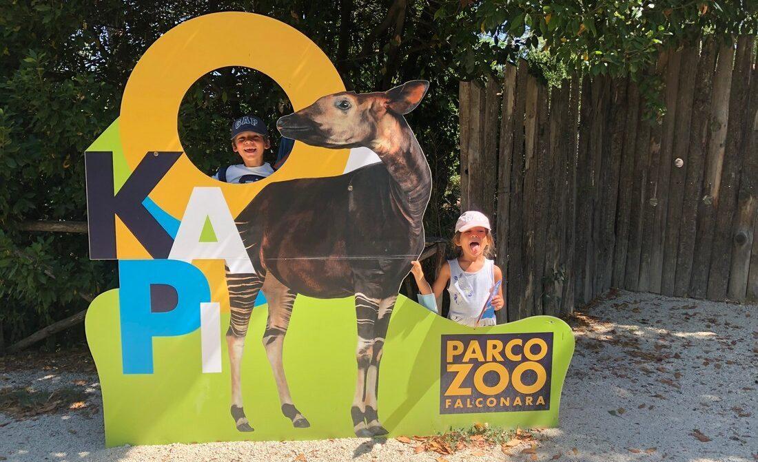 Cosa fare al parco zoo di Falconara