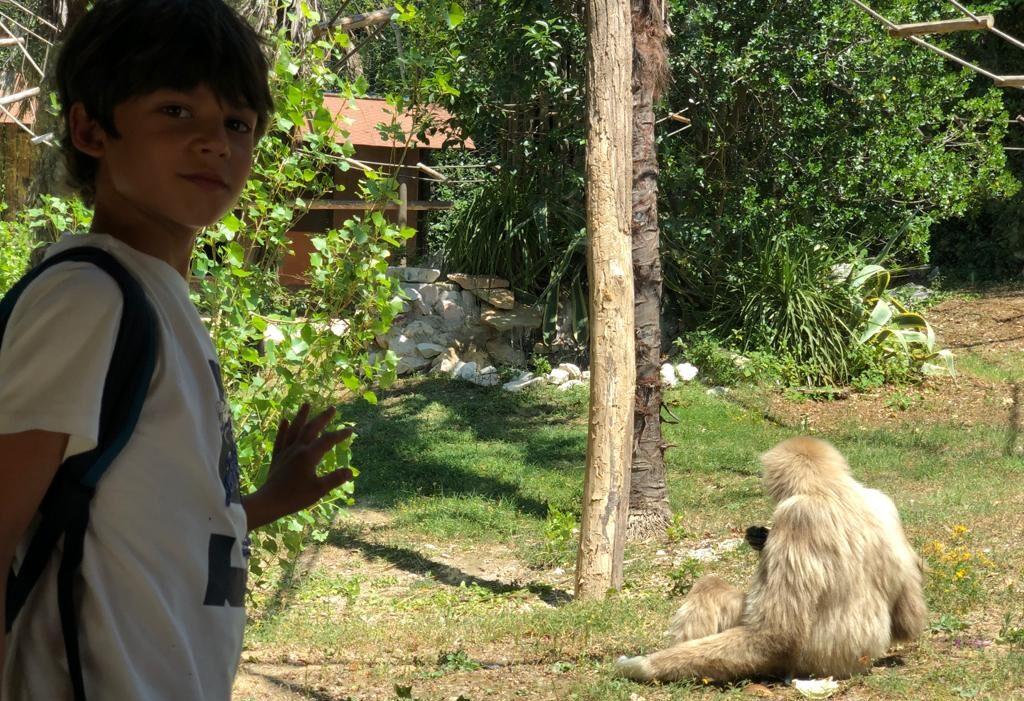Bambini Parco zoo di falconara